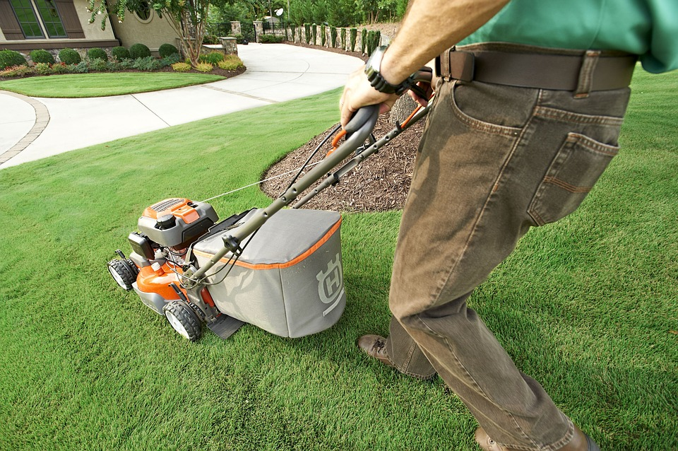 How to Maintain Artificial Turf